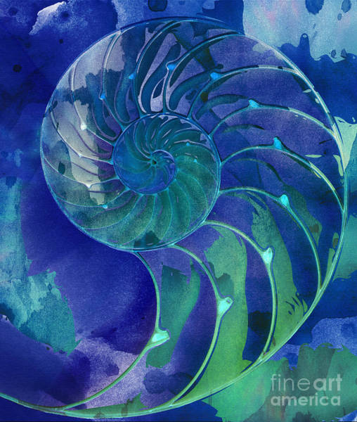 Digital Art - Nautilus Shell Blue Green by Clare Bambers