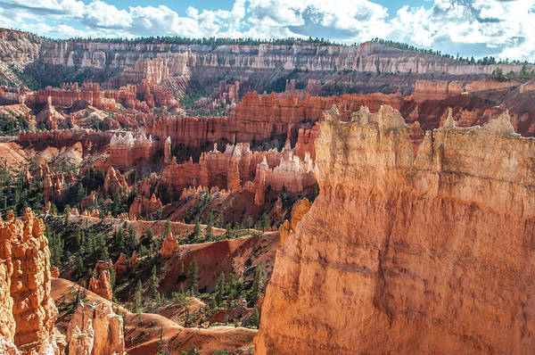 Photograph - Navajo Queens Garden Trails Loop by NaturesPix