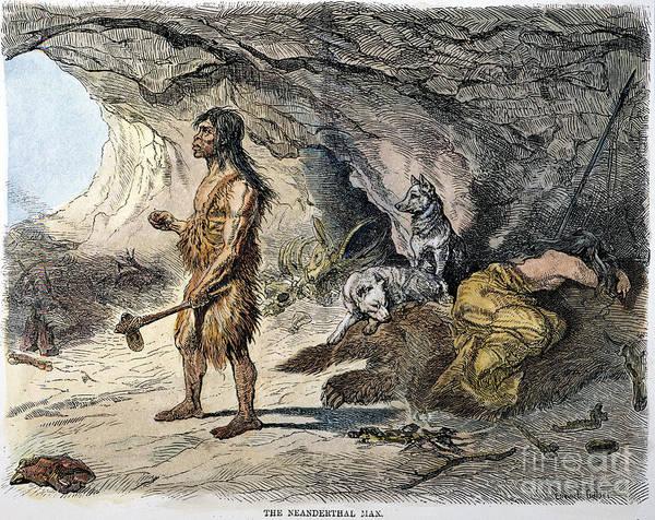 Photograph - Neanderthal Man by Granger
