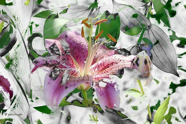Photograph - Near Flower Zero.... by Paul Vitko