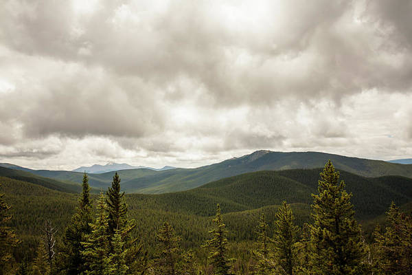 Photograph - Near Monarch Pass At The Continental Divide by Carl Wilkerson