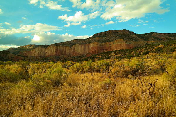 Chama Photograph - Near The Chama River New Mexico by Jeff Swan