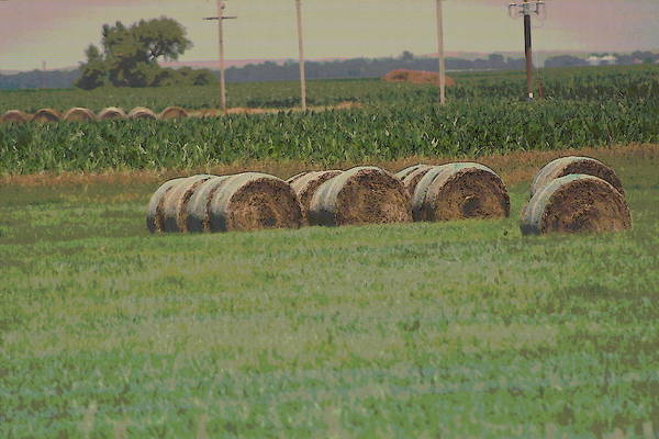 Photograph - Nebraska Farm Life - Bails Of Hay by Colleen Cornelius