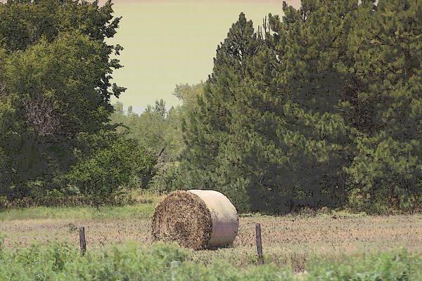 Photograph - Nebraska Farm Life - Hay Bail by Colleen Cornelius