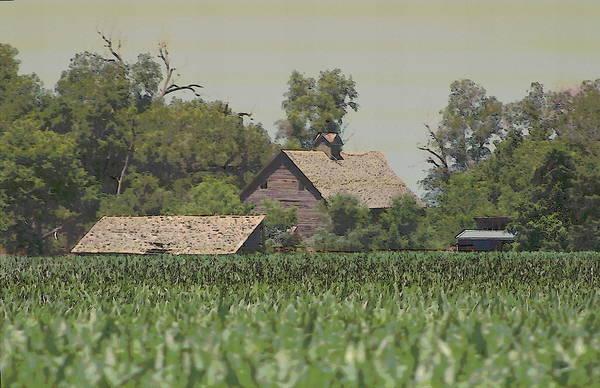 Photograph - Nebraska Farm Life - Rustic Barns by Colleen Cornelius