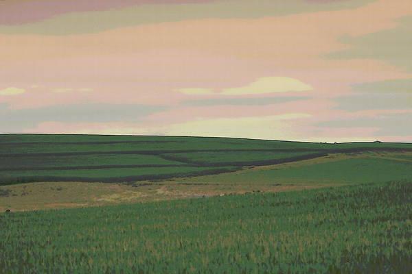 Photograph - Nebraska Farm Life - The Field by Colleen Cornelius