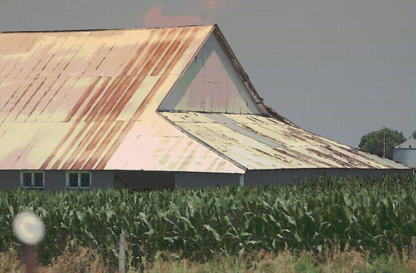 Photograph - Nebraska Farm Life - The Tin Roof by Colleen Cornelius