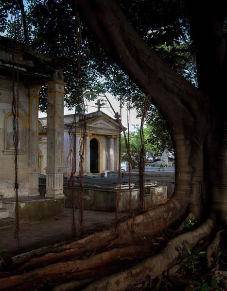 Wall Art - Photograph - Necropolis Cristobal Colon Havana Cuba Cemetery by Charles Harden