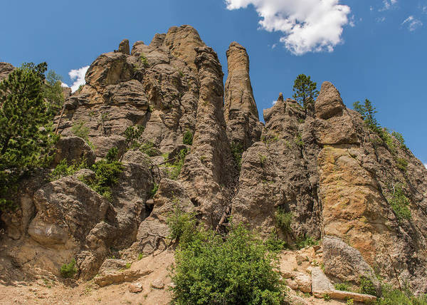 Photograph - Needles In Custer State Park by Brenda Jacobs
