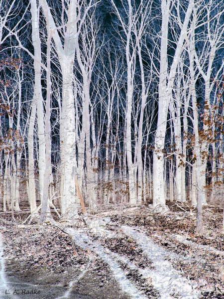 Photograph - Negative Spaces by Lauren Radke