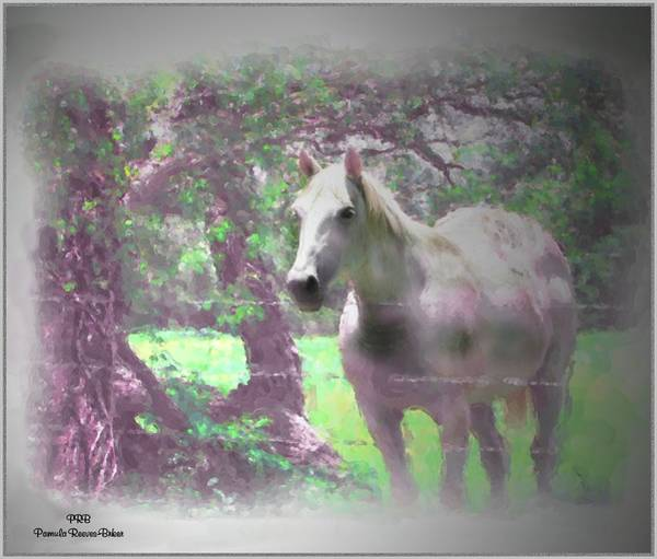 Prb Mixed Media - Neighbor's Horse by Pamula Reeves-Barker
