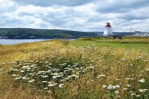Cabot Trail Photograph - Neil's Harbor Lighthouse by Debbie Hart
