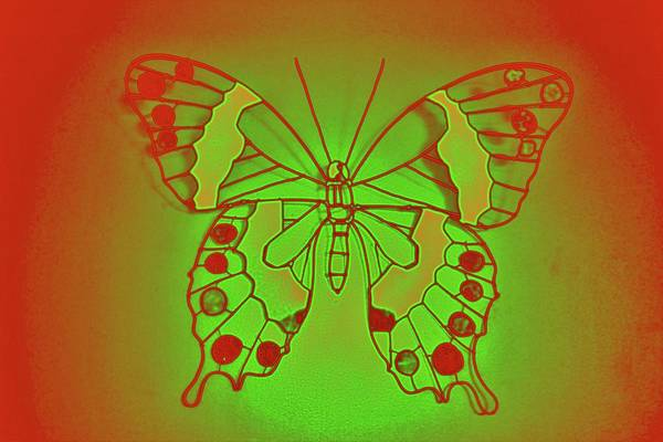 Photograph - Neon Butterfly by Cynthia Guinn