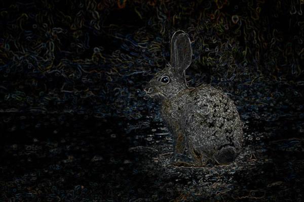 Photograph - Neon Rabbit by Mark Myhaver