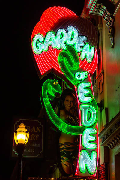 Vintage Neon Sign Photograph - Neon Sign Garden Of Eden by Garry Gay