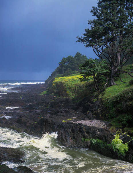 Photograph - Neptune State Park by Robert Potts