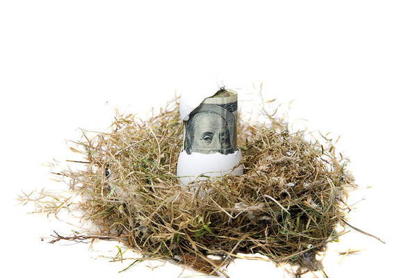 Financial Crisis Photograph - Nest Egg by Michael Ledray