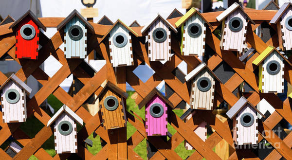 Photograph - Nesting Boxes by Colin Rayner