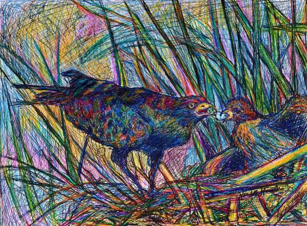 Drawing - Nesting by Kendall Kessler