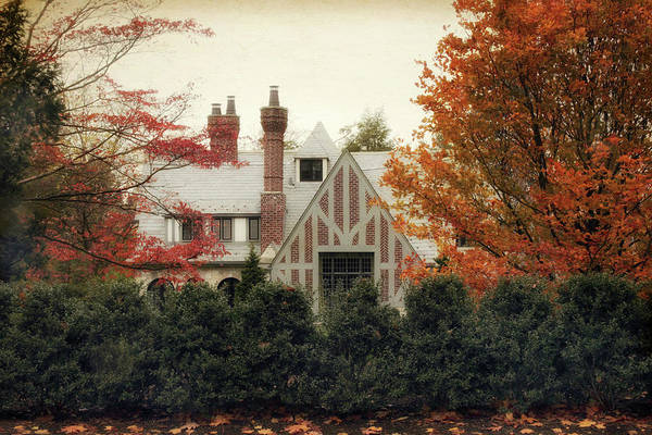 Photograph - Nestled In Autumn by Jessica Jenney