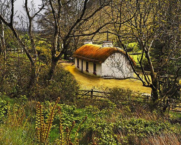 Donegal Digital Art - Nestled In The Wood by Vicki Lea Eggen