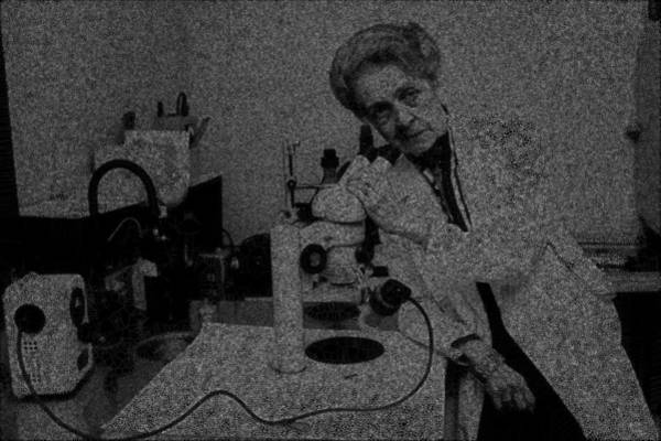 Digital Art - Neurobiology Woman by Stephane Poirier