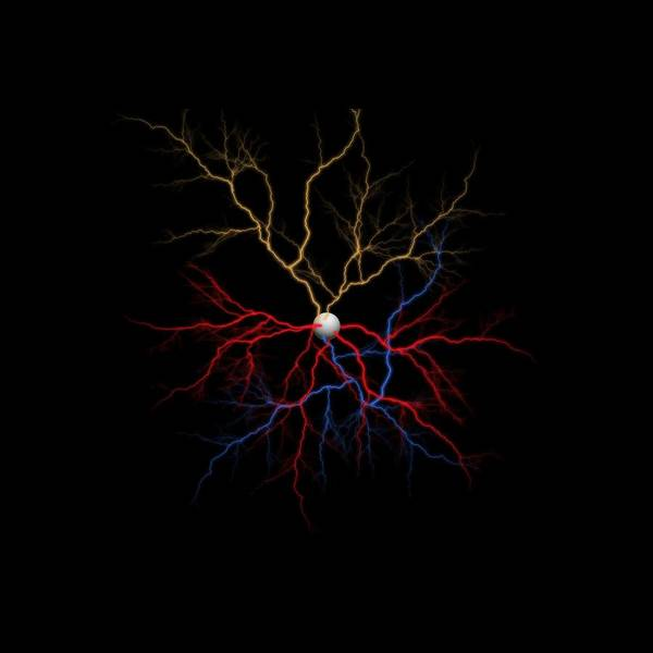 Dendrite Wall Art - Digital Art - Neuron X1x Example by Betsy Knapp