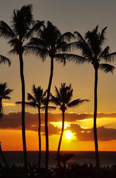 Photograph - Never Ending Sunset by Pamela Walton