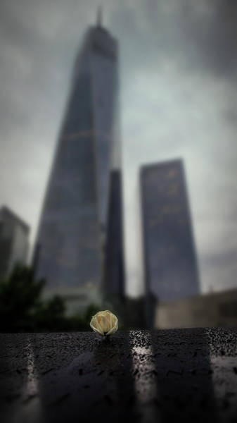 Photograph - Never Forget by Ryan Smith
