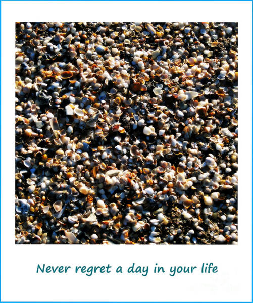 Photograph - Never Regret A Day by Susanne Van Hulst