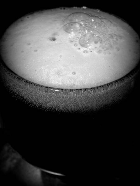 Photograph - New Belgium And Perennial Artisan Ales Salted Belgian Chocolate Stout 3 by Robert Knight