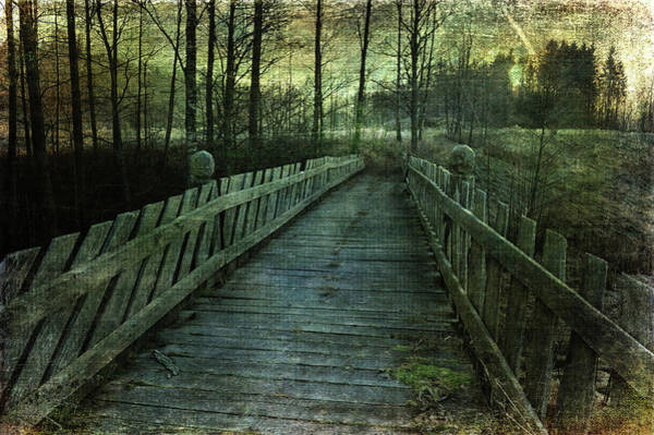 Photograph - New Discoveries by Randi Grace Nilsberg