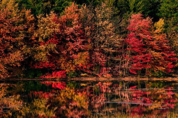 Photograph - New England Fall Foliage Reflection by Jeff Folger