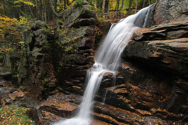 Photograph - New Hampshire Avalanche Waterfall by Juergen Roth