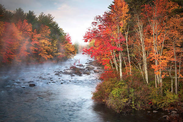 Ossipee Wall Art - Photograph - New Hampshire Fall Colors by Eric Gendron