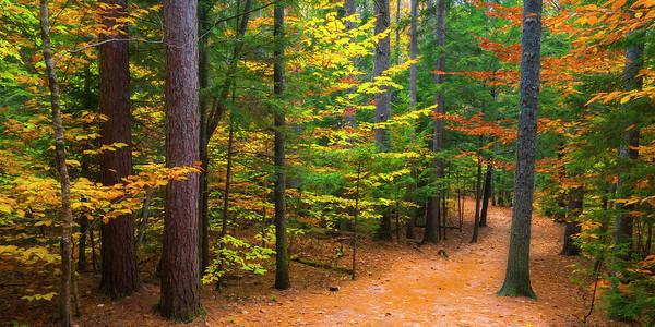 Photograph - New Hampshire Fall Foliage Panorama by Ranjay Mitra