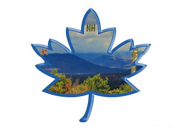 Ossipee Wall Art - Photograph - New Hampshire Maple Leaf Design by Mim White