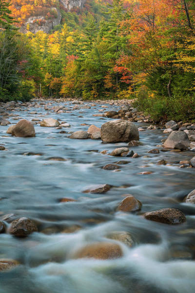 Photograph - New Hampshire White Mountains River In Autumn With Fall Foliage by Ranjay Mitra