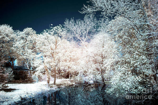 Photograph - New Hope Wonders by John Rizzuto