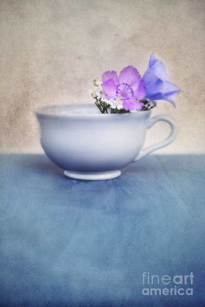 Life Photograph - New Life For An Old Coffee Cup by Priska Wettstein