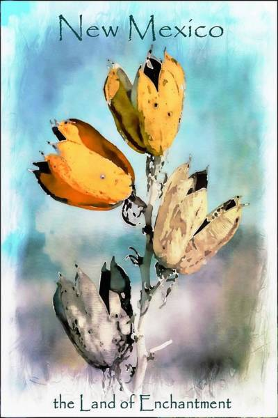 Pod Mixed Media - New Mexico Land Of Enchantment by Barbara Chichester