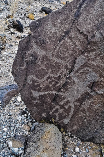 Photograph - New Mexico Petroglyphs by Kyle Hanson