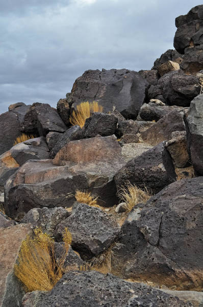 Photograph - New Mexico Volcanic Basalt by Kyle Hanson