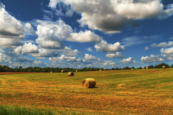 Photograph - New Mowed Hay  by Barry Jones