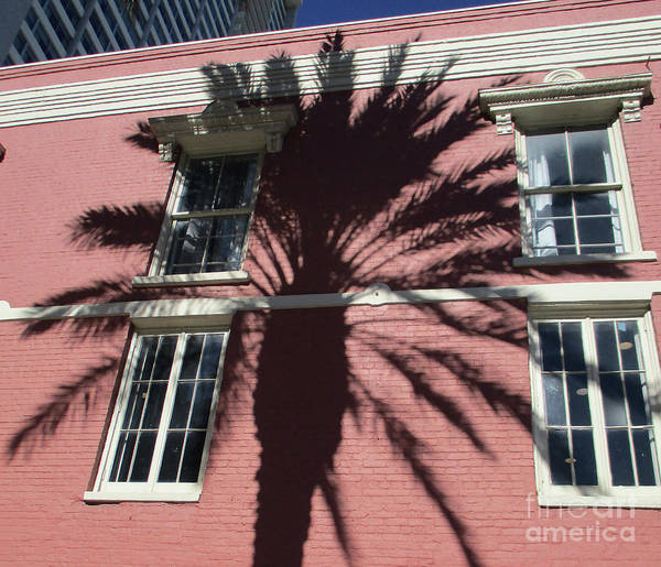 Wall Art - Photograph - New Orleans 7 by Randall Weidner