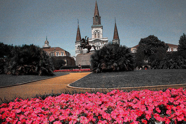 Drawing - New Orleans Cathedral With Pink Flowers - Louisiana Artwork by Peter Potter