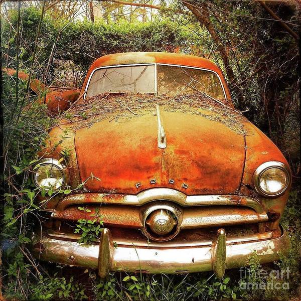 Photograph - Ford At Rest by Terry Rowe