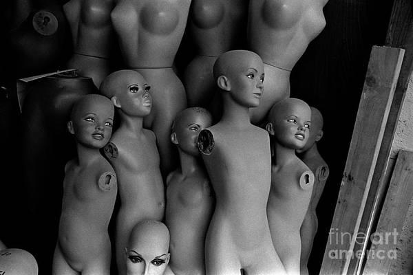 Membership Photograph - New World Order by Arni Katz