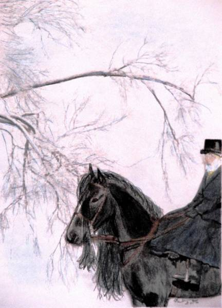 Friesian Drawing - New Year's Resolution by Angela Davies