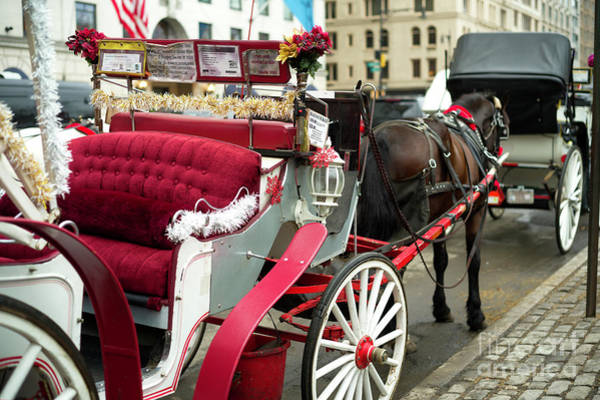 Photograph - New York City Carriage Memories by John Rizzuto